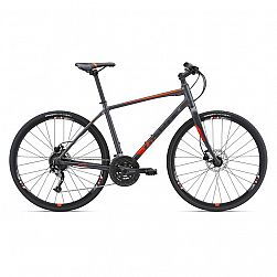 GIANT ESCAPE 1 DISC M CHARCOAL